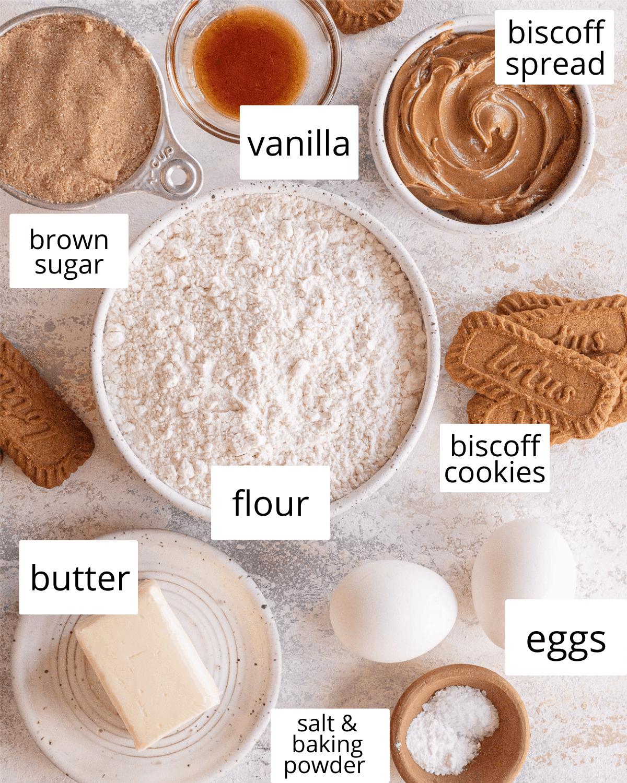 ingredients needed to make biscoff blondies