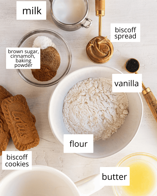 ingredients needed to make a biscoff mug cake
